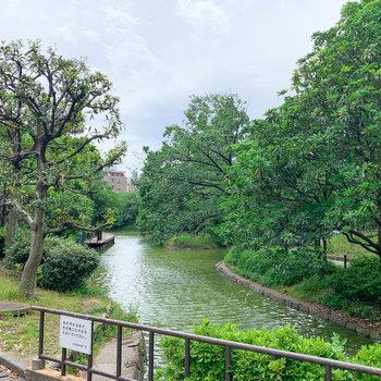 【おまけ】マンション裏には平和の森公園。散歩してリフレッシュ