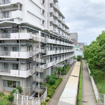 眺望は向かいのマンションです。右手には平和の森公園。