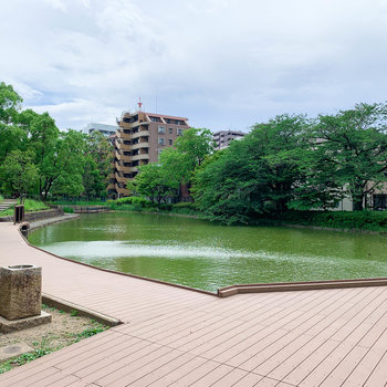 【おまけ】マンション裏には平和の森公園。池を眺めてリフレッシュ。