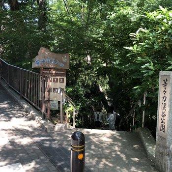 駅までの通り道、等々力渓谷入り口です!