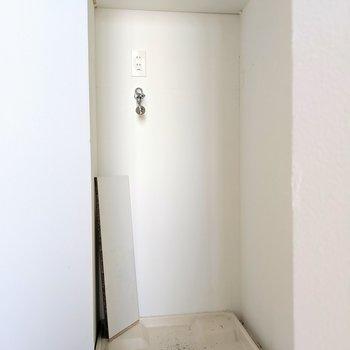 扉で洗濯機隠せます。(※写真は前回募集時の清掃前のものです)