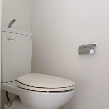 トイレの壁やドアはもちろん透けてません。(※写真は前回募集時の清掃前のものです)