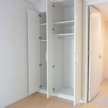 収納は結構大きめです※写真は4階の同間取り別部屋のものです
