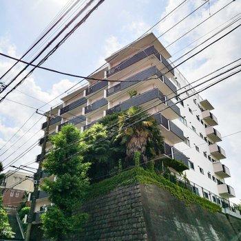 緑萠ゆるマンション。