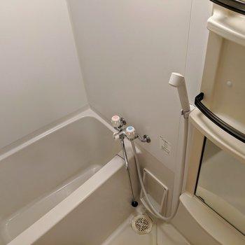お風呂にはミラーやシャンプードレッサーもしっかり。