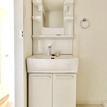 入るとすぐ独立洗面台!サイズ感も丁度いい◎