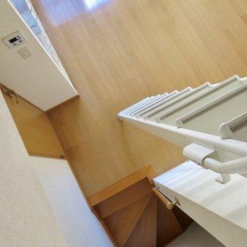 見下ろすと、はしごと階段が見えます
