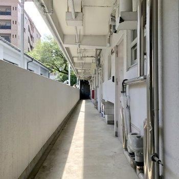 共用廊下はけっこうレトロ。でもそこそこキレイ◎