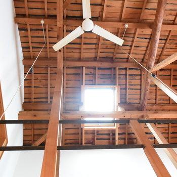 ほれぼれするようなこの天井!自慢するしかないでしょう!