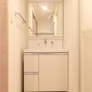 洗面台はスマートなタイプ。 (※写真は5階同間取り別部屋のものです)