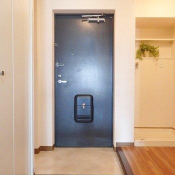 玄関周りは広ーく作られています。(※写真は3階の同間取り別部屋、モデルルームのものです)