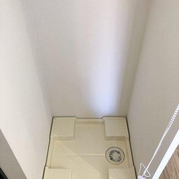 洗濯機置場は玄関にあります。 ロールカーテンが備え付けてあるので隠したいときはひもを引っ張るだけ!
