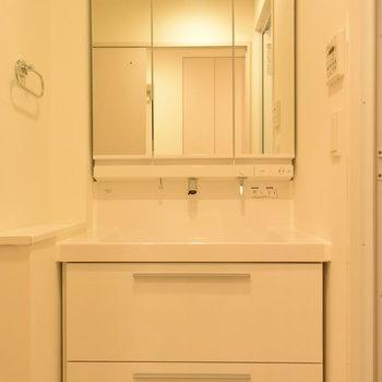 洗い場が大きくてうれしい洗面台(※写真は7階の同間取り別部屋のものです)