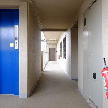 青いエレベーターがアクセント