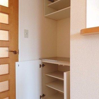 リビングドア横の収納(※写真は4階の同間取り別部屋のものです)