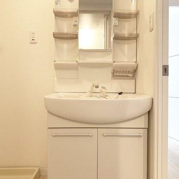 独立洗面台は、収納に洗剤や石鹸をしまっておけるね。