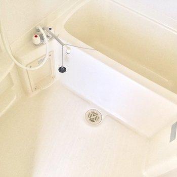 お風呂はこちら。白くて清潔感があります※写真は10階の同間取り別部屋のものです