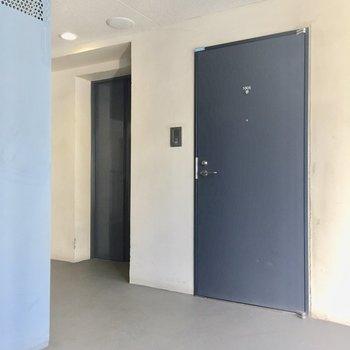 共同廊下。左にエレベーター、右にお部屋の扉です。