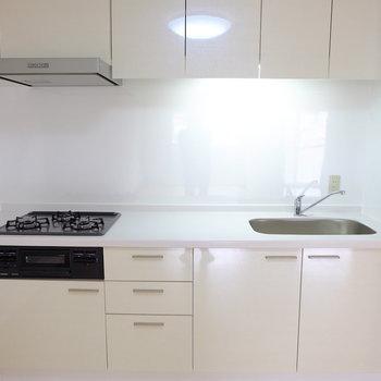 キッチンは新しく (※写真は2階反転間取り別部屋のものです)