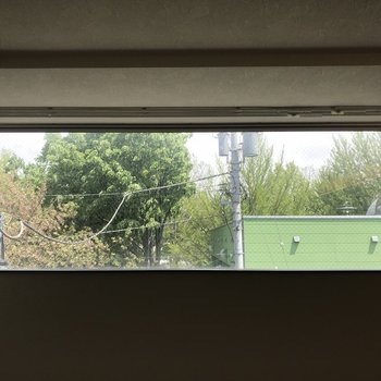 緑が綺麗に見える窓、春には桜も見えますよ