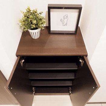 靴は厳選したものを。※写真は2階の同間取りの別部屋のものです。家具はサンプルです
