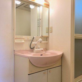 左に洗面台。シャワー付きは何かと便利です。
