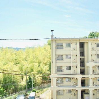 緑に青♪ 自然の感じられる眺望。