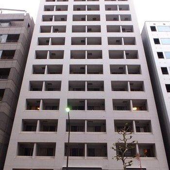 14階建てのしっかりしたマンションです。