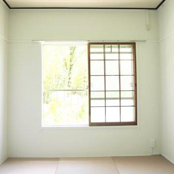 格子の窓と緑がとっても和みます。