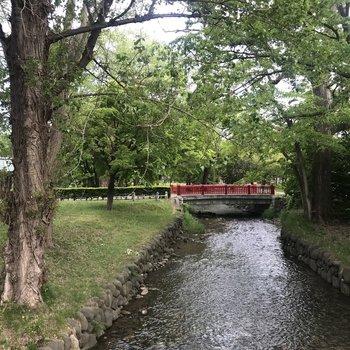 通り道に川、奥には赤い橋。 和だな〜癒されるねぇ〜。