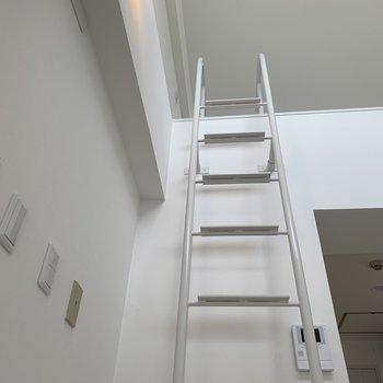 このはしごを登ります
