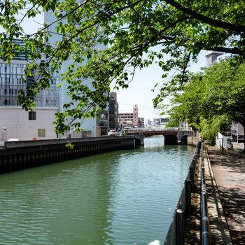 マンションの近くに川があります。