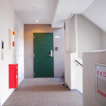 きれいな共用廊下。緑の玄関が映えます。