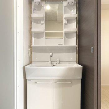 洗面台下の収納はシャンプーや洗剤のストックを○