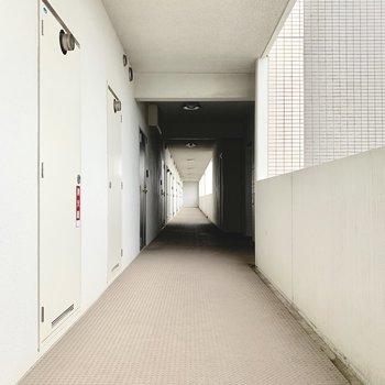 共用廊下もスッキリ綺麗です。