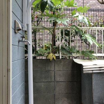 洗濯機置場は外のスペースに。