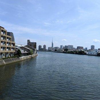 毎朝通勤で眺める室見川。遠くに見えるは福岡タワー。福岡に住んでる感。