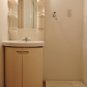 洗面台は丸い形が素敵※写真は6階の反転間取り別部屋のものです