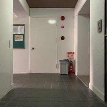 玄関出てすぐの共有スペース。 出て右手にはエレベーターが有ります。写真よりは少し暗めです。