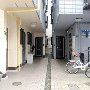 共用部。向かって左側の建物が今回のお部屋。
