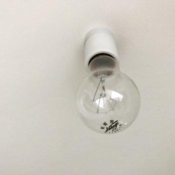 電気はコロッとまるくて可愛い。