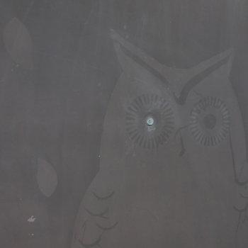 玄関ドアはフクロウの覗き穴。