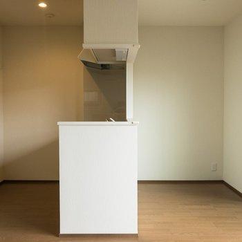 【LDK】キッチンはスペース十分。右側のスペースには食器棚を置こうかな。