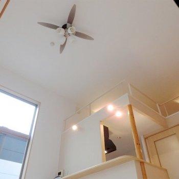 とにかく天井が高い!※写真は同タイプの別室