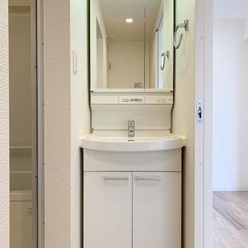廊下途中にサニタリー。独立洗面台がしっかりと。
