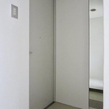 鏡の裏にはシューズボックスがあります