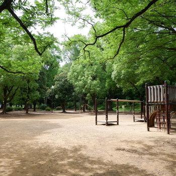 お部屋すぐのところにある公園。緑も遊具も豊かですよ!