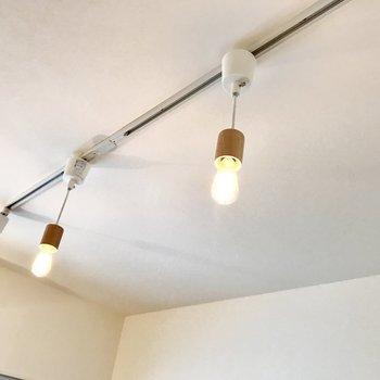 天井にはライティングレール。この素敵な照明もついてくるとか。