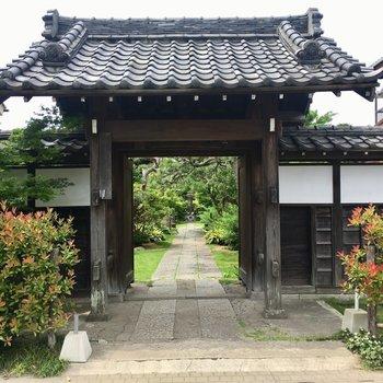 近所のお寺②きれいな庭ですね。