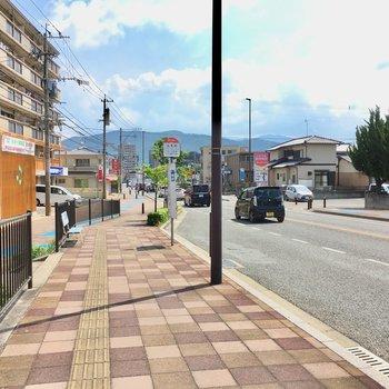 大通り沿いにはバスも出てるし、お店もありました。